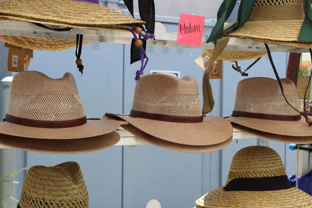 American Hat Makers . 2017 .Hat Day in the Sun. Watsonville (31)